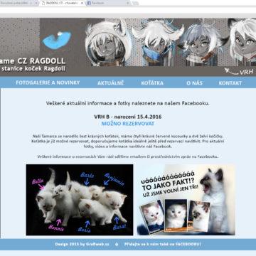navrh-novy web vf